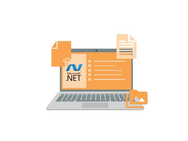 Microsoft .NET developer